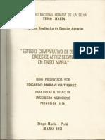 Estudio Comparativo de 20 Variedades de Arroz Secano en Tingo m