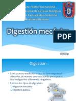 Digestión mecánica