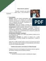 Guias Clinicas Geronto Geriatricas