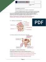 Solución1ºParc.2ªEval.Biología_2014_Examen temas 5 y 6