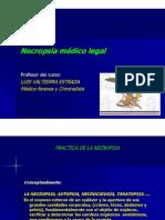 7_necropsia Medico Legal
