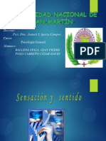 sistemasensorial-100812175135-phpapp01