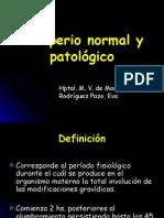 6939451 Puerperio Normal y Patologico