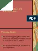 Chloroplast Photosynthesis