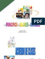 Principios Valores y Virtudes477