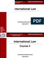 Silvia Martis Tabusca - International Law
