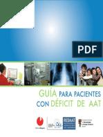 2010 Guia Redaat Para Web