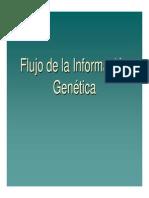 Presentacion-5-Sintesis,  Procesamiento y Regulación  de Proteinas
