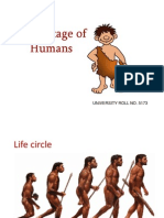 early stage of humans.ppt