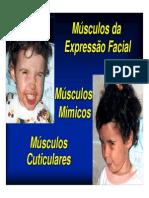 mod3_musculos_mimicos.pdf