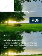 IMR (Infant Mortality Rate)