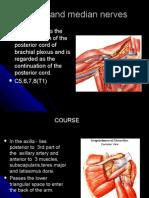 Radial and Median Nerves