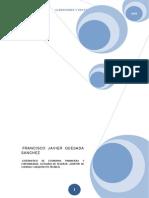 FranciscoJavierQuesada_acreedoresDeudores