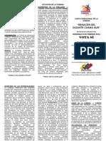 triptico comuna RANACER DEL GIGANTE CHAMA SUR-1.pdf