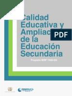 Calidad y Educacion Secundaria Minedu Enero2011