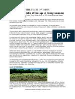 Coimbatore Lake Dries Up in Rainy Season-25!12!2013-Times of India