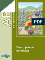 Como Plantar Hortalicas