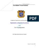 Apuntes_sobre_Organigramas.pdf