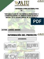 Presentacion Final Proyecto LEONEL GONON