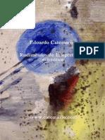 Rudimento de Interpretacion Web Esp Catemario