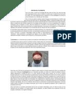 Historia Del Pluviometro