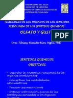 Fisiologia Del Gusto y Del Olfato