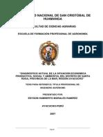 TESIS COMPLETA COCA.pdf