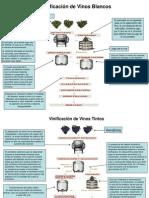 Procesos de Vinificacion