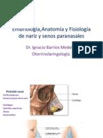 Anatomía de naríz y senos paranasales
