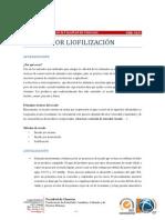 SecadoPorLiofilizacion