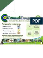 Afiche Cooperativa de Trabajo de Profesionales Consul Coop Limitada