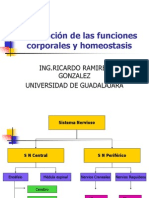 regulaciondelasfuncionescorporalesyhomeostasis-090622220537-phpapp01[1]