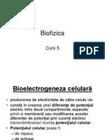 Curs 5 Bioelectrogeneza. Act Cc. Unde Em.
