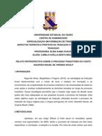 Relatório_CAMILA