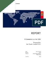 USA E-Commerce Report 2013
