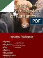 Semiologia Del Aparato Digestivo en Rumiantes Hgffkj
