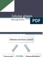 CELULAS GLIALES.pptx