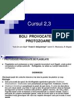 Curs 2,3 Protozooze