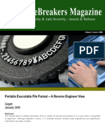 PE Format Reverse Engineer View