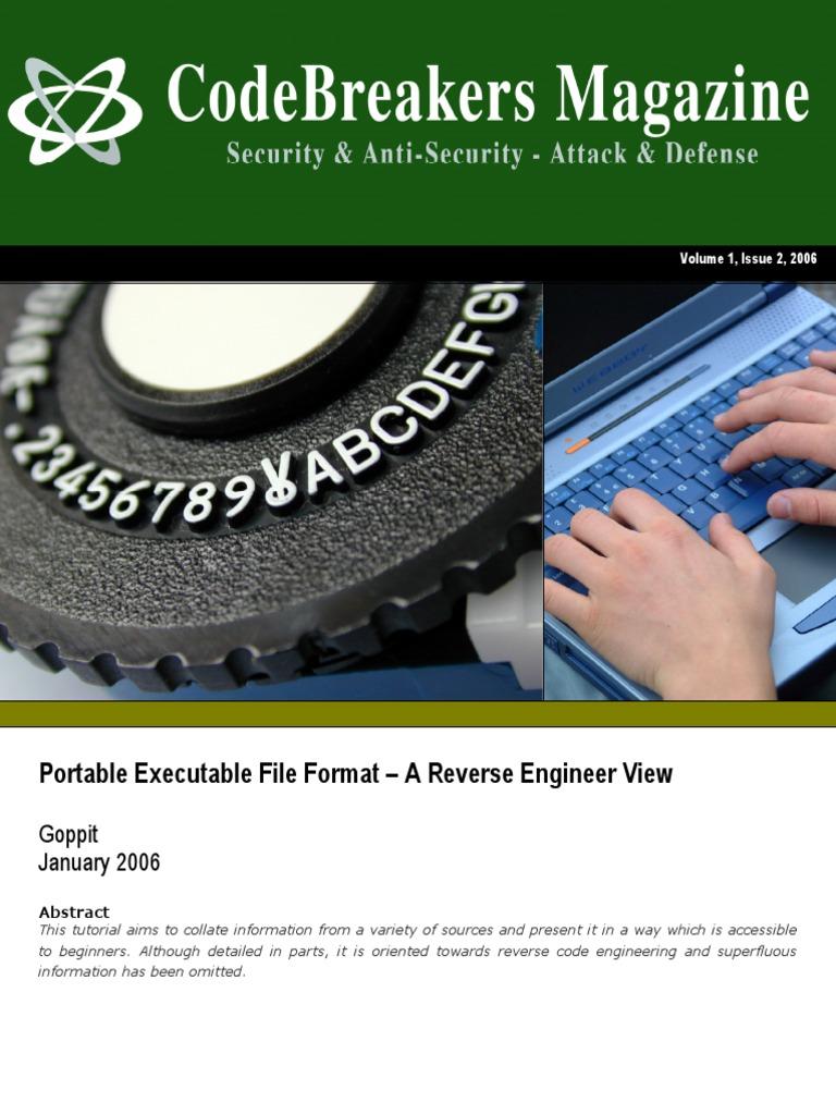 PE Format Reverse Engineer View Pointer