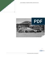 CAPITULO I  ANTECEDENTES Y MARCO CONCEPTUAL.pdf