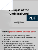 Prolapse of the Umbilical Cord