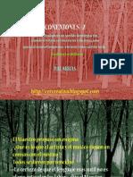 CONEXIONES 2- PALABRAS