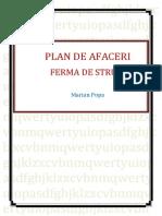 170831318 Plan de Afaceri Ferma de Struti