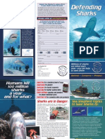 Sea Shepherd Shark Brochure UK