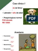 Anestesia, monitoreo y analgesia intensificación 2