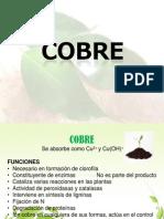Cobre y Cloro.pdf
