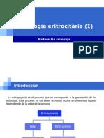 10.- Fisiologia Eritrocitaria Nuevo I (3)