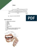 Examen Físico odontológico