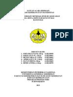 SATUAN ACARA BERMAIN.doc